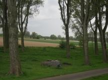 5-20 Grillpl. Rheindeich