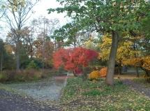 Stadtpark und Landesgartenschaugelände Grevenbroich